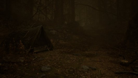 Screenshot for Blair Witch 4