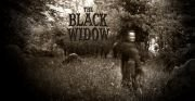 The Black Widow review Article